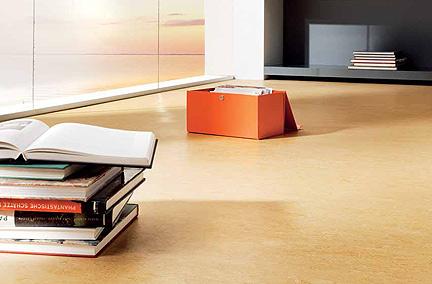 linoleum natur auf dem boden holz sch del in oberfranken. Black Bedroom Furniture Sets. Home Design Ideas
